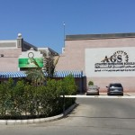 Advanced Generation International School (AGS)